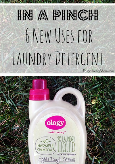 6 New Uses for Laundry Detergent