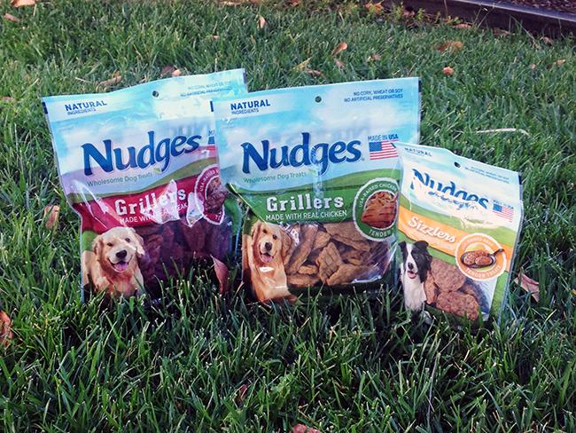 nudges-2