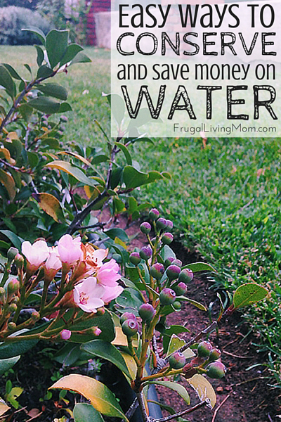 Easy-Ways-to-conserve-water