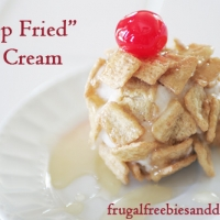 Deep Fried Ice Cream Recipe