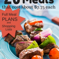 How To Make 20 Grilling Meals from Aldi for Only $155 (Full Meal Plan)