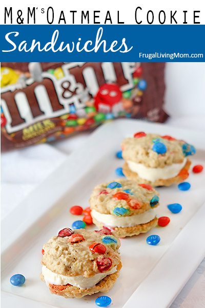 M&M's Oatmeal Cookie Ice Cream Sandwiches