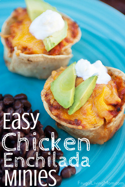 Easy Chicken Enchilada Recipe